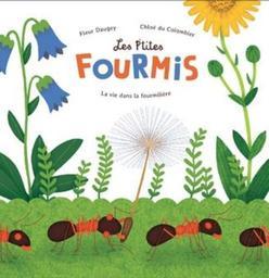 Les p'tites fourmis : la vie dans la fourmilière / Fleur Daugey   Daugey, Fleur (1979-....). Auteur